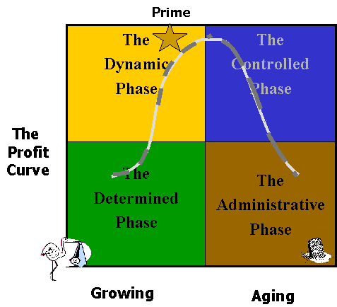 Organization Lifecycles